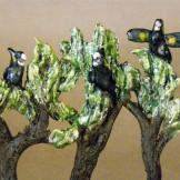 Mini Trees, Casuarinas close up